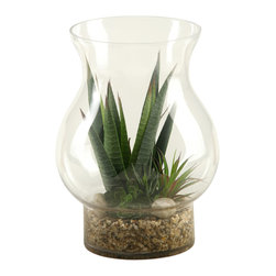 """D&W Silks - Artificial Stripped Agave and Aloe in Hurricane Glass Vase - It's amazing how much adding a plant can change the look of a room or decor, but it can be difficult if your space is not conducive to growing plants, or if you weren't exactly born with a """"green thumb."""" Invite the beauty of nature into your home without all the upkeep with this maintenance-free, allergy-free arrangement of artificial stripped agave and aloe in a hurricane glass vase. This is not a living plant."""