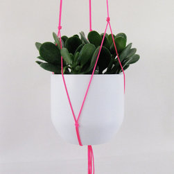 Neon Pink Hanging Plant Holder by Blisscraft & Brazen - I love having a few houseplants throughout the apartment. This would be sure to keep them out of my pup's reach and mouth.