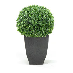 D&W Silks - D&W Silks Boxwood Ball In Square Planter - Boxwood Ball Topiary
