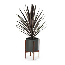 Modernica - Modernica - Case Study Planter w/ Stand Charcoal - The Case Study Planter design originated during the highly prolific period in architecture and home furnishing designs immediately following WW2. The new designs were not only something new to look at but promoted a new attitude towards incorporating your home with a modern lifestyle.