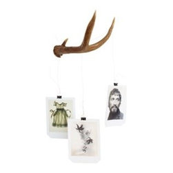 Antler Rack - Antlers are a popular item popping up in homes and stores, so why not bring a functional version into the home? Made from shed deer antlers, these are great for hanging towels, jewelry or photographs.