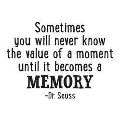 "WallQuotes.com - Dr. Seuss ""Value of a Moment"" Quote Wall Decal - Sometimes you will never know the value of a moment until it becomes a memory. -Dr. Seuss"