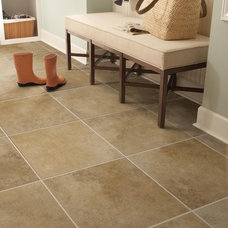 Traditional Wall And Floor Tile by American Marazzi Tile