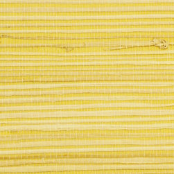 Walls Republic - Rush Yellow  Grass Cloth Wallpaper, Double Roll - Rush wallpaper creates a warm, interesting backdrop for many different types of decor. Made from natural, sustainable materials, it is considered an environmentally friendly choice.