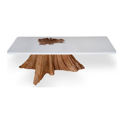 Bloom Table - The life of the tree is prominently displayed amid the clean solid resin tabletop. Expensive yes, but isn't it worth it?