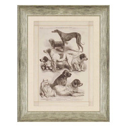 Paragon - International Dog Show I - Framed Art - Each product is custom made upon order so there might be small variations from the picture displayed. No two pieces are exactly alike.