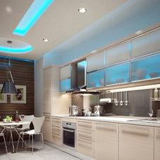 Contemporary Ceiling Lighting by EnvironmentalLights.com