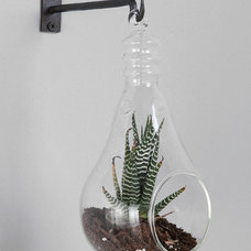 modern indoor pots and planters by Urban Outfitters