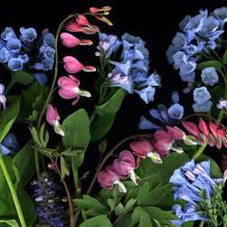Martin Metzger - Hearts and Bells - Botanical Art Photography, by Martin Metzger