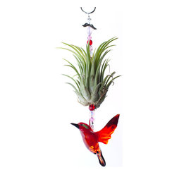 "Spirit Pieces - Lampwork Red Bird Christmas Ornament - This beautiful European lampwork glass Song Bird Ornament is the perfect house gift for all ages!  Comes adorned with Precosia crystal beading and a Crystal Angel .  Ten inches high, the songbird itself is 2.0"" in length and 2.0"" high.  The Tillandsia is a Houston Pink Medium and is about 5"" high.  Water once a week."