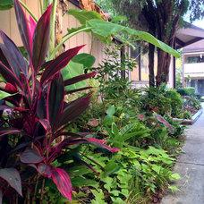 An Apartment Complex Gets a Garden Makeover