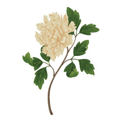 Murals Your Way - Cream Peony Wall Art - The Cream Peony flower mural will be a great complement to any room or office decor