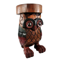 Hand Carved Acacia Wood Owl Stool Plant Stand - This beautiful wooden owl stool / plant stand is an incredible addition to living rooms, hallways, foyers and dens. Made from acacia wood, it is hand carved with special attention paid in the detail of the feet and feathers. It has hand-painted accents and a nice, flat surface for sitting or displaying plants. It measures 18 inches tall, 10 inches in diameter, and weighs over 20 pounds. This beautiful owl stool makes a wonderful gift for friends and family. It`s a must have for any owl fan.
