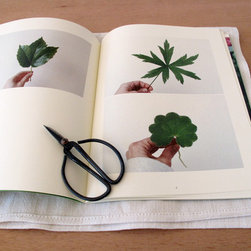 Journal of Plants - I love botanical prints and this book is the perfect blend of coffee table with gorgeous prints in it. It's a great piece to keep out. You'll want to flip through it.