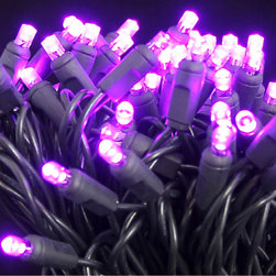 Seasonal Source - 50 Purple 5MM LED Halloween Lights, 6 Inch Spacing on Black Wire - Halloween is the second largest holiday for decorating, and also the most imaginative. Our selection of Dracula inspired, Purple 5MM lights will brighten up