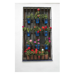 """Geraniums In Spain , Limited Edition, Photograph - Pots of colorful geraniums hang within a wrought iron window grate in Spa"""""""