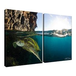 "Ready2HangArt - Ready2HangArt Christopher Doherty 'Sea Turtle' Canvas Wall Art (2 Piece) - Renowned photographer Chris Doherty, takes you on adventures under and above water thru his imagery. This 2 piece canvas art set is offered as part of a limited ""Home Decor"" line, being the perfect addition to any living or work space."