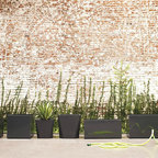 Planterworx Arena Rectangular Planters - Cor-ten steel develops a beautiful patina as it ages, making it the perfect material for a desert escape. These planter boxes fit the bill!