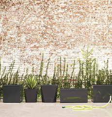 contemporary outdoor planters by Design Within Reach