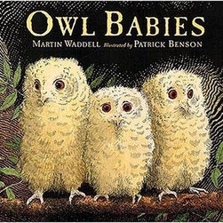 Owl Babies by Martin Waddell and Patrick Benson - Kids love these feathery babies.