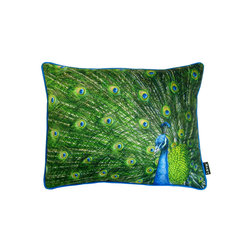 Lava - Peacock Feathers 20 x 16 Pillow (Indoor/Outdoor) - 100% polyester cover and fill. Made in USA. Spot clean only. Safe for use indoors or out.