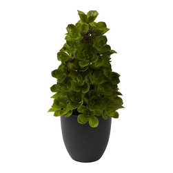 Nearly Natural - Echeveria Cone Topiary Artificial Plant - Includes planter. Ideal accent piece. Makes a perfect gift. Green and black color. Vase: 5 in. Dia. x 5.25 in. H. Overall: 7 in. L x 7 in. W x 15 in. H>Sometimes, understated and consistent is the perfect look. Echeveria succulent cone topiary perfectly illustrates that. Rising out of the decorative planter, the lush, soft greenery swirls and curves its way skyward, giving the most pleasing of views. Plus, the look will stay fresh and green for years, with nary a drop of water. Pick one for yourself, and another as a gift.
