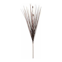 "Oddity - Oddity 32"" Brown Onion Grass Stem Pack 6 - Add a wave of color and swoosh of style to your fall arrangements with 32"" Onion Grass stems."