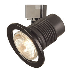 "Lightolier - Lightolier Par 20 Flex w/ Black Ring - This black finish track head is perfect for general lighting. It measures 4"" wide by 4 5/16"" height. Designed specially to utilize halogen lamps. Takes 50 watt Par 20 bulb (not included).  Black finish.   4"" wide.  4 5/16"" height.  Takes 50 watt Par 20 bulb (not included)."
