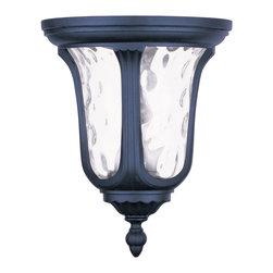 Livex Lighting - Livex Lighting 7861-04 Outdoor Lighting/Outdoor Ceiling Light - Livex Lighting 7861-04 Outdoor Lighting/Outdoor Ceiling Light