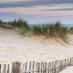 Magic Murals - Sand Dunes Sunrise Panorama Wall Mural -- Self-Adhesive Wallpaper by MagicMurals - Bring the beach, but not the sand, indoors with this panoramic view of sand dunes at sunrise that will have your eye following the fence from the sea grass all the way to the ocean in the horizon.