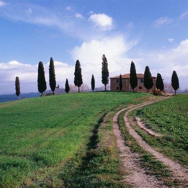 Murals Your Way - Farm House In Tuscan Countryside Wall Art - Photographed by Dietrich Leis Stock Photography, the Farm House in Tuscan Countryside wall mural from Murals Your Way will add a distinctive touch