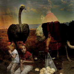 Ostrich - Limited Edition Photography - Ostrich' is part of a series of candid, in-camera single exposure photographs which merge the living and the dead, creating allegorical narratives of our co-existence with nature. This award-winning photographer's work has been published in several national publications such as National Geographic and Vogue.