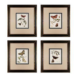 "Sterling Industries - Sterling Industries 10034-S4 23.25"" Height Butterfly Metamorphosis Wall Art - Specifications:"