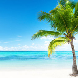 "Home Decor - Palms And Sea Mega Panoramic Wall Decals - A gorgeous panoramic decal, this tropical wall art captures the magnificence of a palm tree studded beach, where rays of sunlight beam down through a clear blue sky. Contains three 26.4"" x 38.6"" pieces. Imported from Italy."