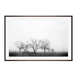 """Lupen Grainne Framed Print, Black & White Fog and Trees, Mat, 28 x 42"""", Espresso - The unity and diversity of an oak tree's bare winter branches stand in stark relief against a wide foggy sky. A study in natural patterns, the distant trees take on the look of coral, as multifaceted as snowflakes. 13"""" wide x 11"""" high 20"""" wide x 16"""" high 42"""" wide x 28"""" high Alder wood frame. Black or white painted finish; or espresso stained finish. Beveled white mat is archival quality and acid-free. Available with or without a mat.{{link path='shop/accessories-decor/pb-artist-gallery/artist-gallery-lupen-grainne/'}}Get to know Lupen Grainne.{{/link}}"""