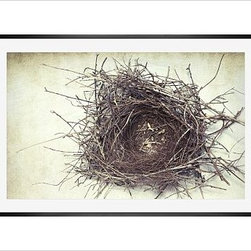 "Lupen Grainne Framed Print, Nest, Mat, 28 x 42"", Black - This is an image of an abandoned nest the photographer found in an enormous passionflower vine. The photo is at once charming and haunting, conjuring up thoughts of flight and home. 13"" wide x 11"" high 20"" wide x 16"" high 42"" wide x 28"" high Alder wood frame. Black or white painted finish; or espresso stained finish. Beveled white mat is archival quality and acid-free. Available with or without a mat. {{link path='/shop/accessories-decor/pb-artist-gallery/artist-gallery-lupen-grainne/'}}Get to know Lupen Grainne.{{/link}}"