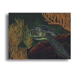 """READY2HANGART.COM - Ready2hangart David Dunleavy 'Black Sea Turtle' Canvas Wall Art, 16"""" X 20"""" - This beautiful canvas wall art brought to you by Ready2hangart from renowned artist David Dunleavy exemplifies his passion for marine life while translating it to detailed underwater paintings.  It is fully finished, arriving ready to hang on the wall of your choice."""