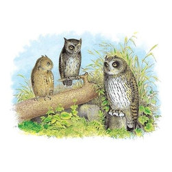 "Buyenlarge.com, Inc. - Short-Eared Owl and Screech Owl - Paper Poster 12"" x 18"" - Another high quality vintage art reproduction by Buyenlarge. One of many rare and wonderful images brought forward in time. I hope they bring you pleasure each and every time you look at them."