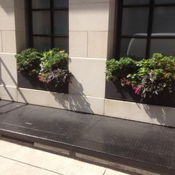 New York Roof Top Garden Services and Garden Designs :NYPlantings - How to plant outer wall of window?