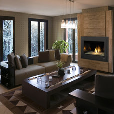 Indoor Fireplaces by Fireside Hearth & Home Twin Cities