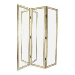 Wayborn - Wayborn Mirror with Frame Full Size Dressing Room Divider in Silver - Wayborn - Room Dividers - MS002