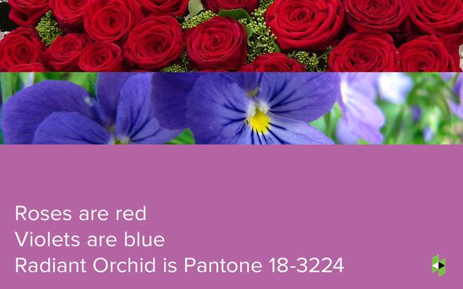 016.Valentine's Day