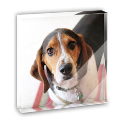 """Made on Terra - Cute Beagle Mini Desk Plaque and Paperweight - You glance over at your miniature acrylic plaque and your spirits are instantly lifted. It's just too cute! From it's petite size to the unique design, it's the perfect punctuation for your shelf or desk, depending on where you want to place it at that moment. At this moment, it's standing up on its own, but you know it also looks great flat on a desk as a paper weight. Choose from Made on Terra's many wonderful acrylic decorations. Measures approximately 4"""" width x 4"""" in length x 1/2"""" in depth. Made of acrylic. Artwork is printed on the back for a cool effect. Self-standing."""
