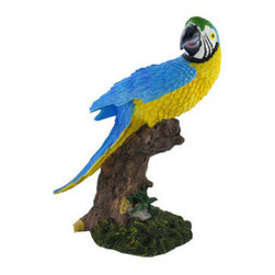 Blue Macaw Parrot Perched on Stump Statue - This incredibly realistic statue is a wonderful addition to any home, bar, or restaurant with a tropical theme! Made of cold cast resin, it measures 12 inches tall, 9 inches wide, and 6 inches deep. The hand painted detail in this piece is beautiful, from the bold colors of the bird to the texture of the gnarled tree stump. It makes a great gift for a friend, and is sure to be admired.