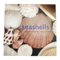 Seashells - Iselin/Carlson Book - An art book with a touch of science to exalt the wonder of the forms it celebrates, Seashells is a San Francisco art photographer's intimate tribute to a seaside still-life subject, paired with a marine geologist's factual explanation of shell shapes to enhance their appeal to the amateur and the scientist alike. Striking, crisp close-ups explore myriad wonders of color and texture.