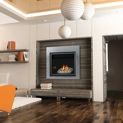 Napoleon Clean Face HD35 Series 36'' x 41'' DV Gas Fireplace System -