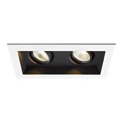 WAC Lighting - MT-3LD211R 2-lt Mini LED Multiple Spot Remodel Housing and Trim - MT-3LD211R 2-lt Mini LED Multiple Spot Remodel Housing and Trim