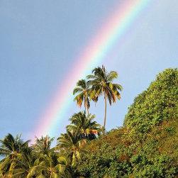 Magic Murals - Rainbow Palms Wallpaper Wall Mural - Self-Adhesive - Multiple Sizes - Magic Mura - Rainbow Palms Wall Mural