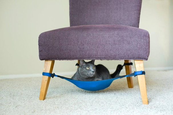 Contemporary Cat Beds by Cat Crib