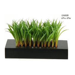 D&W Silks - D&W Silks Wild Grass in Black Wooden Planter - Ideal for adding a touch of greenery to a shelf, ledge, or table top, this green wildgrass piece set in a black wooden box brings a natural touch of contemporary style to any design space. Comes preassembled as shown, this piece requires no water or sunlight to maintain it's color and shape.